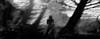 Shadow girl-1 (Poli Maurizio) Tags: woman girl female sketch portrait drawing drawingportrait abstractportrait digitalportrait actress actor celebrity hollywood pencil coloredpencil pencilportrait freehand fine art sky blackandwhite color beauty water hair artist disegno ritratto schizzo manolibera occhi chiaroscuro matita dibujos fantasy fantastic facebook twitter linkedin pinterest instagram tumblr bouchac indoor outdoor italy baby sicily ocean sea sun snow clouds man barocco illustrazione naturalism background bed concept grey conceptart atmosferic watercolor technique surrealism 3dweddingpartyfamilytravelfriendsjapanvacationlondonbeachcaliforniabirthdaytripnycsummernatureitalyfrancemeparisartflowerssanfranciscoeuropechinaflowernewyorkwaterpeoplemusiccameraphone 3daustraliachristmasusaskygermanynewcanadanightcatholidayparkbwdogfoodsnowbabysunsetcitychicagospaintaiwanjulybluetokyoenglandmexicowinterportraitgreenred 3dpolimaurizioartworkredfunindiaarchitecturegardenmacrospringthailandukseattlefestivalconcertcanonhouseberlinhawaiistreetlakezoofloridajunemaywhitevancouverkidstreecloudstorontobarcelonageotaggedhome 3dbwbwdigitalseadaytexasscotlandcarlighthalloweencampingchurchanimalstreeswashingtonrivernikonaprilbostongirlirelandgraffitiamsterdamrocklandscapeblackandwhitecatsnewyorkcitysanromeroadtripurbanhoneymoonocean 3dwatercolorsnewzealandmarchblackmuseumyorkhikingislandmountainsyellowsydneysunhongkongshowgraduationcolorfilmmountainanimallosangelesschoolmoblogphotodogs 3dartdesigndisegnosiciliacalabriabasilicatacampaniamarcheabruzzomoliselaziotoscanaemiliaromagnalombardiavenetofriuliveneziagiuliapiemontevalledaostaliguriatrentinoaltoadigepuglia 3dlandscapepaesaggiolunasolemarenuvolecittàtramontoalbamontagnecollinenebbialuceautomobilearredamentointerniesterninaturamortacieloragazzadonnauomobambinofruttabarca 3dcanigattirinascimentomodelbarocconaturalismomattepaintingfuturismoastrattismocubismosurrealismorealismoiperealismoclassicismorococomanierismoromanticismoimpr