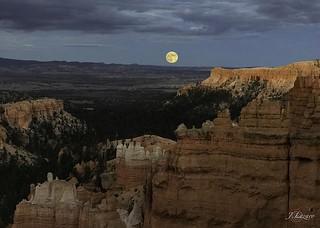 Moonlight Serenade ©