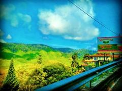 Tanah Rata, Pahang https://goo.gl/maps/e4sbc8pFb1n  #大自然 #nature #自然 #طبيعة #자연 #Alam #природа #ธรรมชาติ #金马仑 #CameronHighland #travel #holiday #traveling #trip #Asian #Malaysia #旅行 #度假 #亞洲 #馬來西亞 #วันหยุด #การเดินทาง #ホリデー #휴일 #여행 #праздник #путешествие # (soonlung81) Tags: trip cameronhighland طبيعة 自然 วันหยุด путешествие malaysia 휴일 馬來西亞 alam 旅行 馬來西亞旅行 nature природа ธรรมชาติ 여행 asian 大自然 度假 traveling 金马仑 자연 ホリデー การเดินทาง праздник holiday travelmalaysia 亞洲 travel