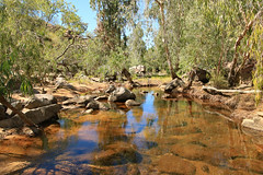 Isolated gem (aussiegypsy_Katherine NT) Tags: umbrawarragorge topend nt northernterritory nature park wagiman people indigenous aboriginal katherine pinecreek tourism bush walk walking rocks rocky water sandstone aussie aussiegypsy australia australian lorraineharris scene scenery landscape blue sky pool outdoors dry season creek red cliffs isolated remote outback