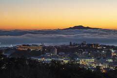 Auckland Museum Sunrise (gaabNZ) Tags: fog panoramic sunrise auckland newzealand sony sonycamera sonya7mkiii colour sunshine weather