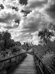 Hampton Creek Wetlands (bill.d) Tags: 580nm hamptoncreekwetlandscomplex kalamazoocounty michigan portage unitedstates cloud infrared landscape nature outdoor park summer wetland us