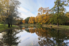 Mirror of the autumn lake. (fedoseenko) Tags: санктпетербург россия красота colour природа nature beauty blissful loveliness beautiful saintpetersburg sunny art shine dazzling light russia day green park peace tree trees garden blue white голубой небо лазурный color sky pretty sun пейзаж landscape lake clouds river water waves view heaven mood serene golden reflection вода река grass field wood autumn gold feodorovsky пейжаз федоровский colours alley town outdoors picture отражение облака архитектура озеро