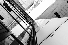 Cologne Abstract II (Zesk MF) Tags: bw black white schwarz weiss mono zesk mf köln building architecture up minimal abstract spiegelung reflection windows fenster mirroring