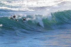2018.07.15.08.34.52-ESBS Bronte Seq 05-003 (www.davidmolloyphotography.com) Tags: bodysurf bodysurfing bodysurfer bronte australia newsouthwales sydney surf surfing wave