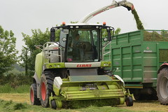 Claas Jaguar 870 Self Propelled Forage Harvester (Shane Casey CK25) Tags: claas jaguar 870 self propelled forage harvester spfh knockraha traktor traktori trekker tracteur trator ciągnik silage silage18 silage2018 grass grass18 grass2018 winter feed fodder county cork ireland irish farm farmer farming agri agriculture contractor field ground soil earth cows cattle work working horse power horsepower hp pull pulling cut cutting crop lifting machine machinery nikon d7200