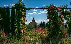 Views from the Generalife Gardens (sharon.verkuilen) Tags: spain andalusia granada alhambra generalife garden sonya7rii unescoworldheritagesite