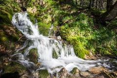 The Dose Fall (Bergfex_Tirol) Tags: bergfex austria österreich oostenrijk oesterreich autriche lechtal lech tyrol dose tirol wasser wasserfall häselgehr cascade falls waterfall cataract