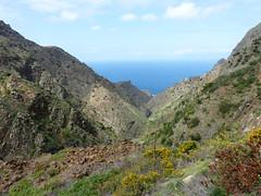 Rosa-völgy (ossian71) Tags: spanyolország spain kanáriszigetek canaryislands lagomera gomera természet nature tájkép landscape völgy valley