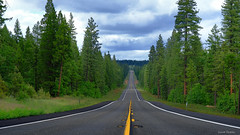 The road that I never wanted to end... (vasanthmp) Tags: freeway highway scenicdrive roadtrip drive road trees greenery green forest byways nature travel wood sky tree