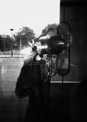 Prise 2 : On ne bouge plus !... (woltarise) Tags: autoportrait ventilateur reflets argentique film ilford hp5 montréal siteangus magasin building quartier rosemont 6h05am yashicat4super