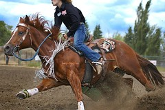 Barrel Tipper (cowgirlrightup) Tags: resized cowgirl barrelracer tippedbarrel rodeo alberta cowgirlrightup