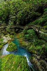 Chongqing-180129-186 (Kelly Cheng) Tags: asia china chongqing longshuicanyon longshuixiafissuregorge northeastasia southchinakarstwulongkarstunescoworldheritagesite unescoworldheritagesite wulong wulongkarstnationalgeologypark canyon color colorful colour colourful day daylight gorge karst landscape nature nopeople nobody outdoor river tourism travel traveldestinations water 武隆喀斯特 龙水峡地缝