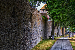 Wall (anderswetterstam) Tags: architecture city stone trees old path citadel medieval
