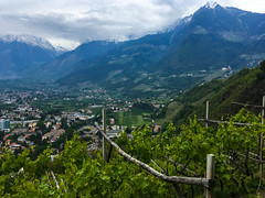 Adige Valley (Bephep2010) Tags: 2017 adige alpen apple berg etschtal frühling iphone iphonese italien italy landschaft meran merano southtyrol südtirol trentinoaltoadige alps landscape mountain spring valley it