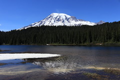 Reflection Lake (Zach Hawn) Tags: mountrainier mountainwildlife wildlife hiking nps nationalparkservice pacificnorthwest pnw wander mrnp mora nationalpark findyourpark outdoors washington western piercecounty