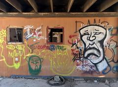 Come@me (cowyeow) Tags: art abandoned saltonsea old desert california usa america bombaybeach beach weird graffiti shack building decay wall design house forgotten face