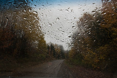 (Theresa Best) Tags: rain autumn fall travel wanderlust adventure car roadtrip canon canon760d canont6s canon8000d theresabest