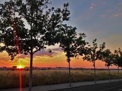 Atardecer en el suroseste de Madrid (Ripley1969) Tags: árbol árboles cielo azul blue orange naranja anaranjado ciudad city campo countryside madrid españa spain sun sol nube promenade road camino tarde paisaje landscape europa europe