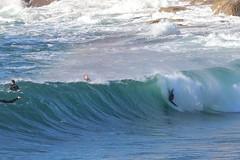 2018.07.15.08.51.25-ESBS Bronte seq 09-004 (www.davidmolloyphotography.com) Tags: bodysurf bodysurfing bodysurfer bronte sydney newsouthwales australia surf surfing wave waves