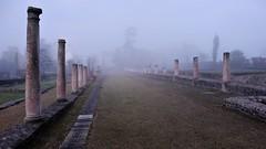 Vestiges Gallo-romains de Corseul (claude 22) Tags: bretagne cotes armor breizh france roman ruins ruines corseul vestiges galloromains monterfil