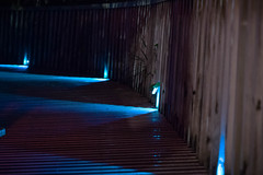 DSC08235 (SunThroughEyelids) Tags: nature green art ambient adventure awesome amazing a7ii aqua auckland landscape dark makro car night light follow hiking travelling exposure sky u