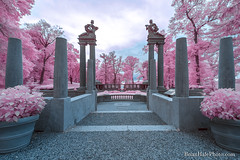 7-watermark-R (Brian M Hale) Tags: ir infrared infra red 590 590nm outside outdoors newengland new england usa cottoncandy cotton candy brian hale brianhalephoto architecture ruins castle hill ipswich ma mass massachusetts statues monuments pink blue teal trees bushes