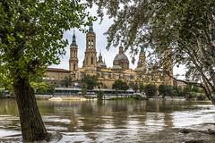 Zaragoza (kike.matas) Tags: canon canoneos6d canonef1635f28liiusm kikematas zaragoza elpilar rioebro crecida agua rio arboles paisaje nublado hojas lightroom6