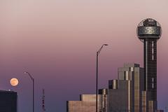 Passing Through_路過_2018.06.27_1301 @ Dallas, TX (KT Shiue) Tags: dallas texas tx reuniontower moon pink color passingthrough ktshiue