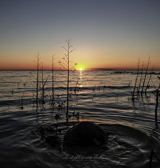 Charlevoix Sunset (Beth Crawford 65) Tags: sunsset water lake michigan lakemichigan greatlakes fluid charlevoix peaceful inspiring moving colorful sunset sky wide angle vivid magic peace dusk