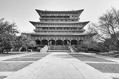 0781 Korean Temple In Lumbini (Hrvoje Simich - gaZZda) Tags: blackwhite religion outdoors temple korean lumbini asia nepal nikond750 nikon nikkor283003556 gazzda hrvojesimich