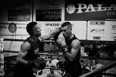 35640 - Hook (Diego Rosato) Tags: boxe pugilato boxelatina boxing ring match incontro nikon d700 2470mm tamron bianconero blackwhite hook gancio pugno punch