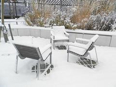 Första novembersnön på utestolar (Linzen004) Tags: stockholmsuniversitet vinter snö
