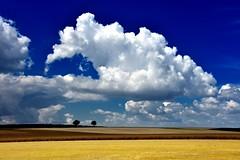 Cumulus (r.wacknitz) Tags: wolken clouds wetter landscape vorharz himmel felder sommer feld