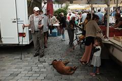 break (spanaut) Tags: waidhofenanderybbs niederösterreich austria at streetphotography bauernmarkt girl dog sticks transaction market farmersmarket
