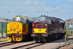 37401 37668 York (British Rail 1980s and 1990s) Tags: train rail railway loco locomotive er easternregion mainline ecml eastcoastmainline yorkshire livery liveried traction diesel station ee englishelectric type3 br britishrail growler tractor 37 class37 wcrc drs largelogo directrailservices westcoastrailwaysco maryqueenofscots 37668 37401 railroad