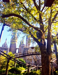 The Wizarding World of Harry Potter - Universal Orlando (traceplaces) Tags: wizard magic harrypotter themepark universal universalorlando traceplaces orlando florida wizardingworld universalstudios hogwartscastle hogwarts hogsmeade diagonalley rides theforbiddenjourney rollercoaster amusementride castle
