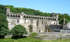 St. David's Cathedral, Pembrokeshire, Wales  == Bishops Palace (rossendale2016) Tags: ruins partial stone old cathedral adjacent adjoining palace bishops pembrokeshire wales south david saint st