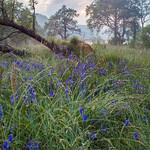 Loch Chon thumbnail