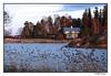 peaceful area in helsinki (harrypwt) Tags: helsinki finland city 40d 18200 framed borders ea landscape trees wooden house reed grass water sea harrypwt