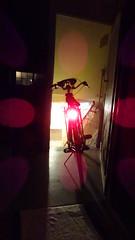 20.06.18 End 00:44 (Mado46) Tags: bxl06 mado46 bicycle bike biciclette biketour bici fietstocht fahrrad fiets radtour rad 777v7f