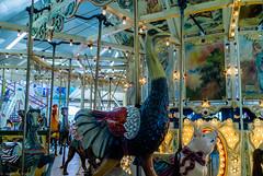 DSC05089 (jhallen59) Tags: ocnj maryland md boardwalk carousel