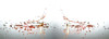 Fraternal Twins (Wim van Bezouw) Tags: drops waterdrops sony ilce7m2 highspeed mirror freezebox