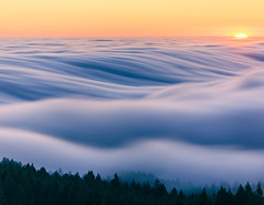 Rolling Fog (ddouangc) Tags: mt tam mount tama fog sunset west coast bay area california