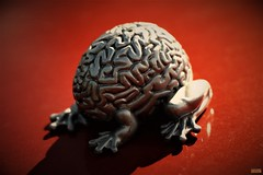 the brain (notatoy) Tags: art toy frog brain silver