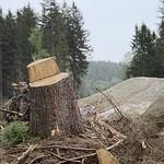 Harz_e-m10_1015184434-1 thumbnail