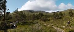 The traverse of the Rum Cuillin: the path to Coire Dubh (Mumbles Head) Tags: scotland mountains highlands rum rhum isleofrum cuillin rumcuillin corbetts grahams landscape