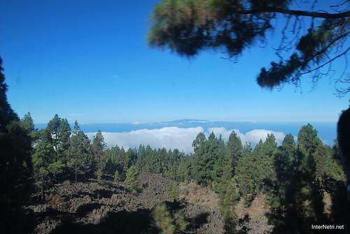 Понад хмарами, Тенеріфе, Канарські острови  InterNetri  014