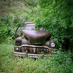Junkyard Dawg (Robert Jack Images) Tags: abandoned junkyard oldcar vintage film analog analogue