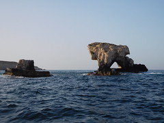The Lion and the Bear (SixthIllusion) Tags: lion bear cliff rocks sea travel travelling boat trip exploring legend sicilia siracusa sicily italy